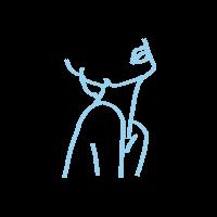 BA_Line-Art_Neck